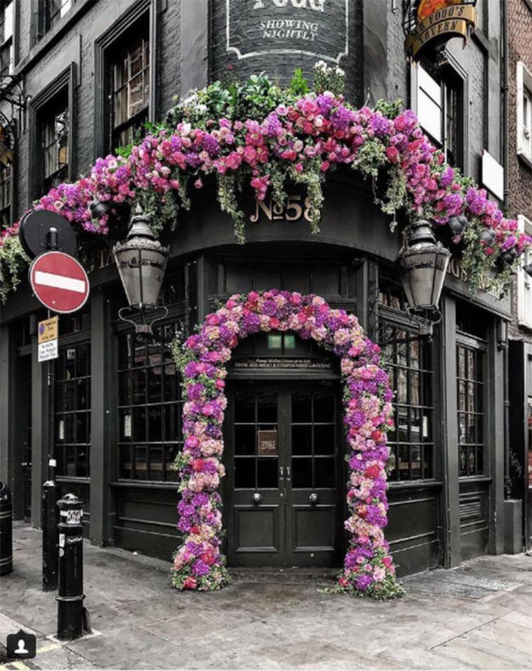 dừng hoa hồng tại cổng vòm
