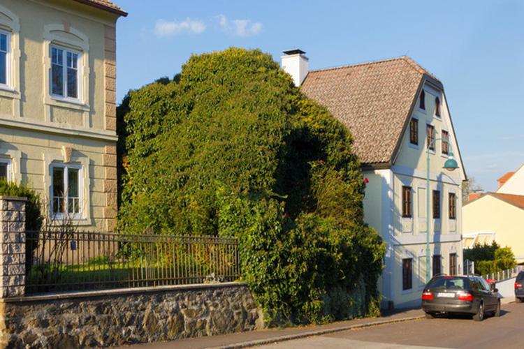 nhà được thiết kế bao chùm bở cây xanh