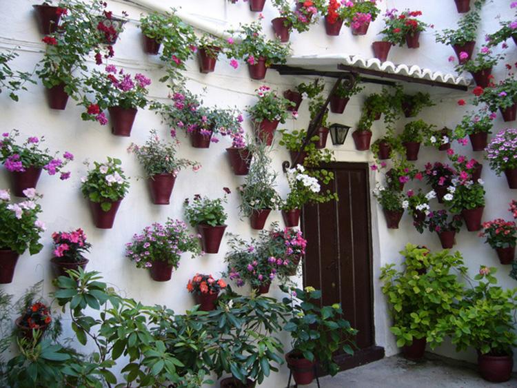 ý tưởng thiết kế nhà kết hợp vườn treo