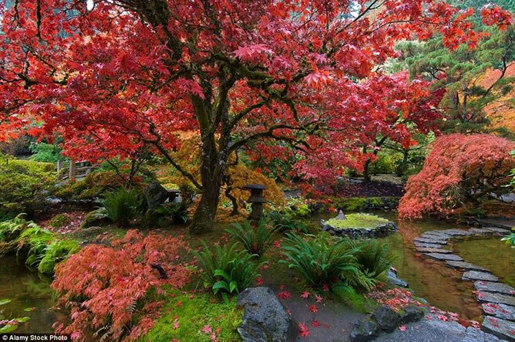 Vườn Butchart, British Columbia, Canada 2