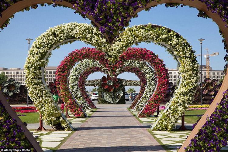 Vườn Dubai Miracle, Các tiểu vương quốc Ả Rập thống nhất