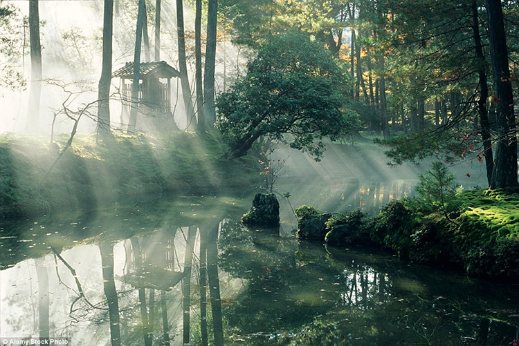 Vườn Saihō-ji, Nhật Bản