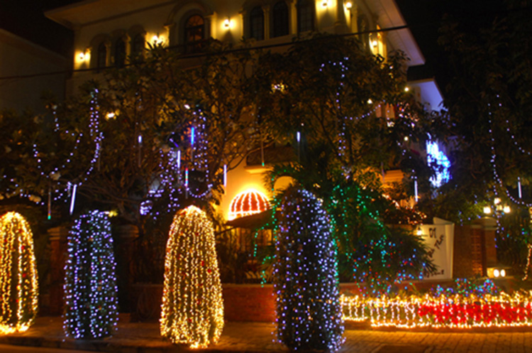 cây thông được trang trí thêm đèn nháy
