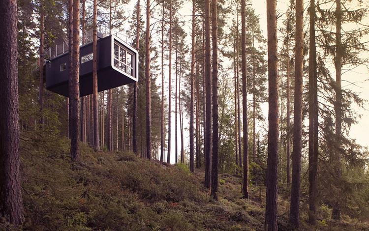 khách sạn độc đáo trên cây