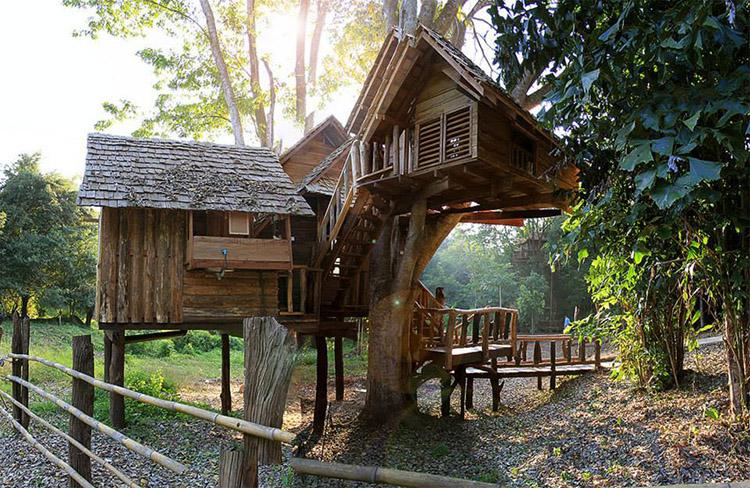 kiến trúc khách sạn lạ thiết kế trên cây
