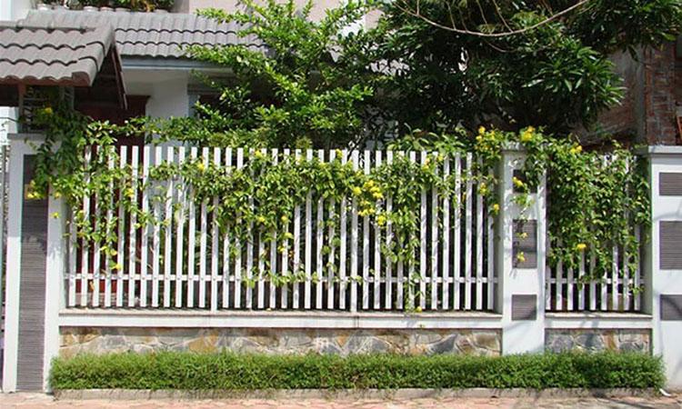 tường cây vườn đứng