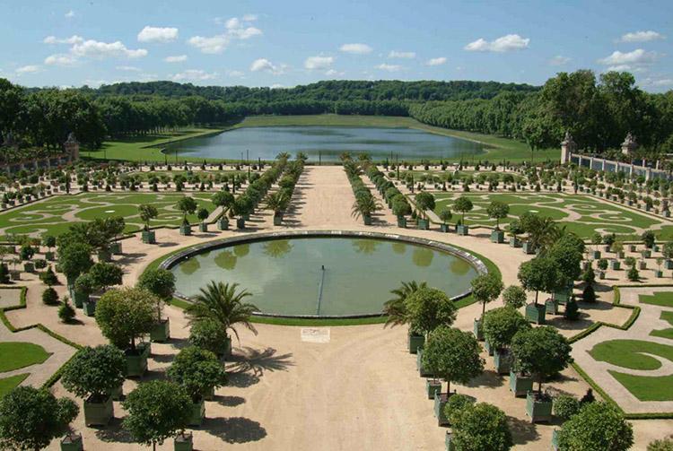 Cây xanh sân vườn Pháp