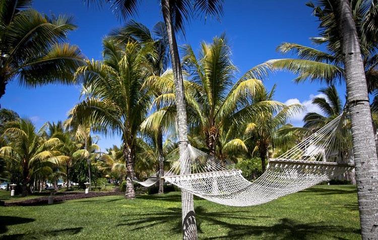 Thiết kế Resort với hồ bơi và không gian ngoài trời tuyệt đẹp - View 6