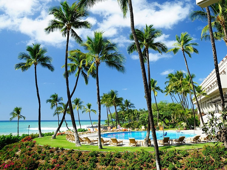 Cảnh quan xanh tại Resort